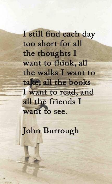 friendship-and-reading-quote-430x704